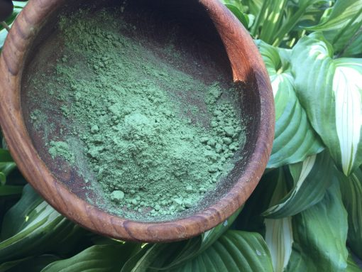 Back To Your Roots Herbs - Barley Grass Powder