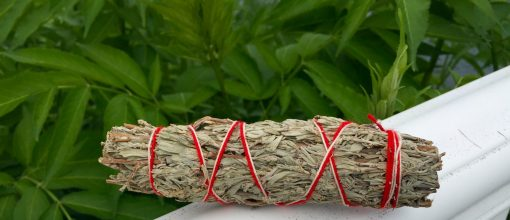 Back To Your Roots Herbs - Shasta Sage Smudge