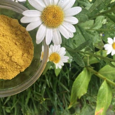 Back To Your Roots Herbs Swedish Flower Pollen - Swedish Flower Pollen