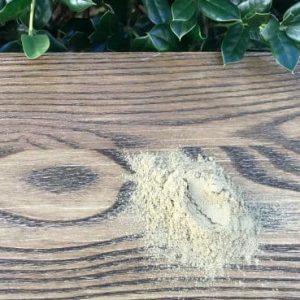 Maral root powder