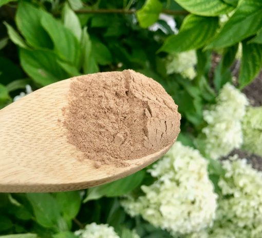 Back To Your Roots Herbs - Camu Camu powder benefits
