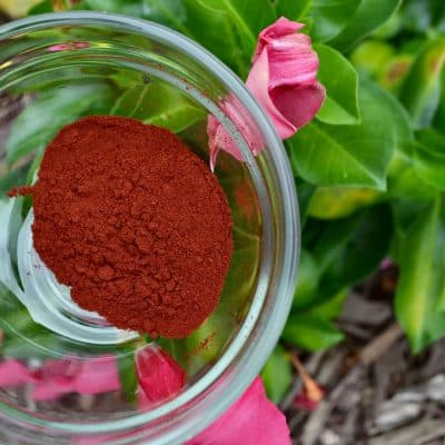 Back To Your Roots Herbs Astaxanthin Algae (Haematococcus pluvialis)