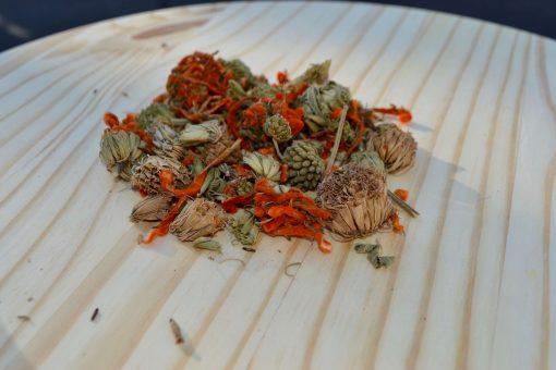 Back To Your Roots Herbs Wild Dagga (Leonotis leonurus)