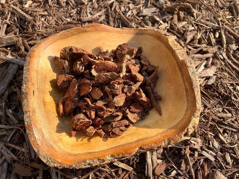 African geranium powder