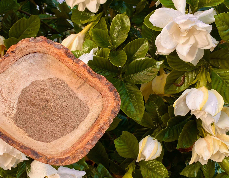 White lotus flower powder