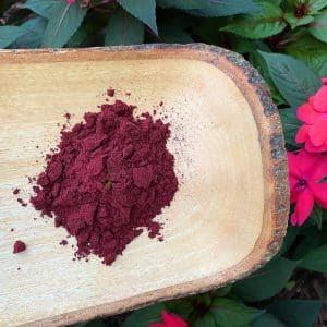 Haskap berry powder