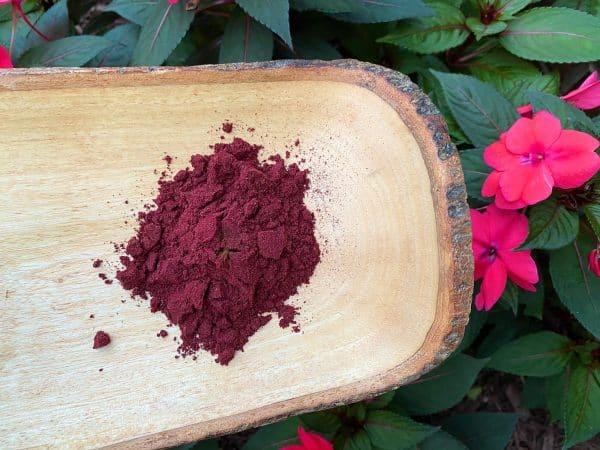 Haskap berry powder