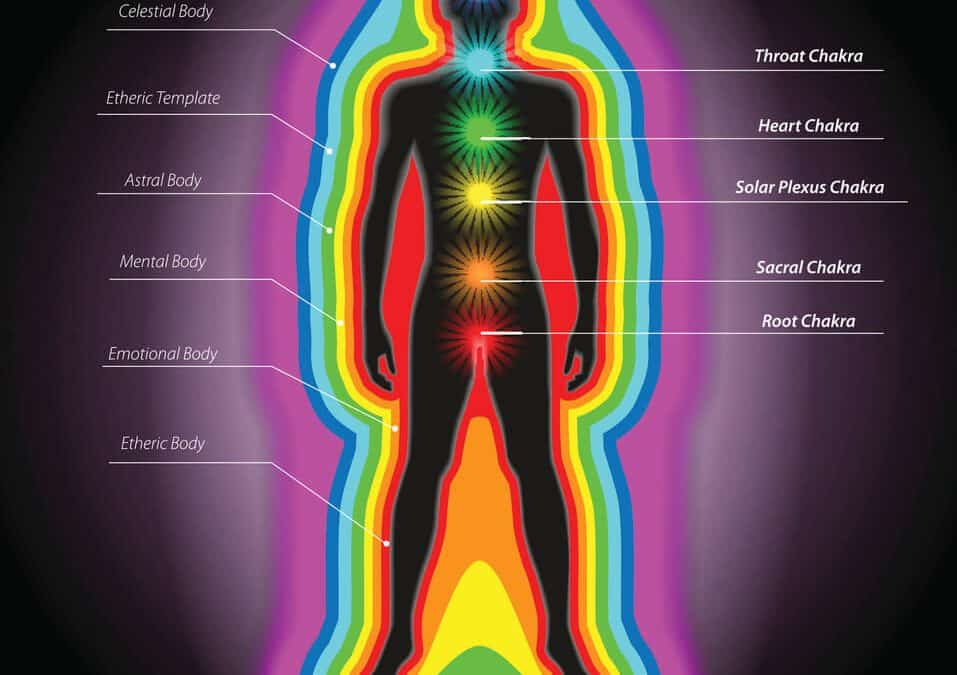 Herbs and The Human Energy Field