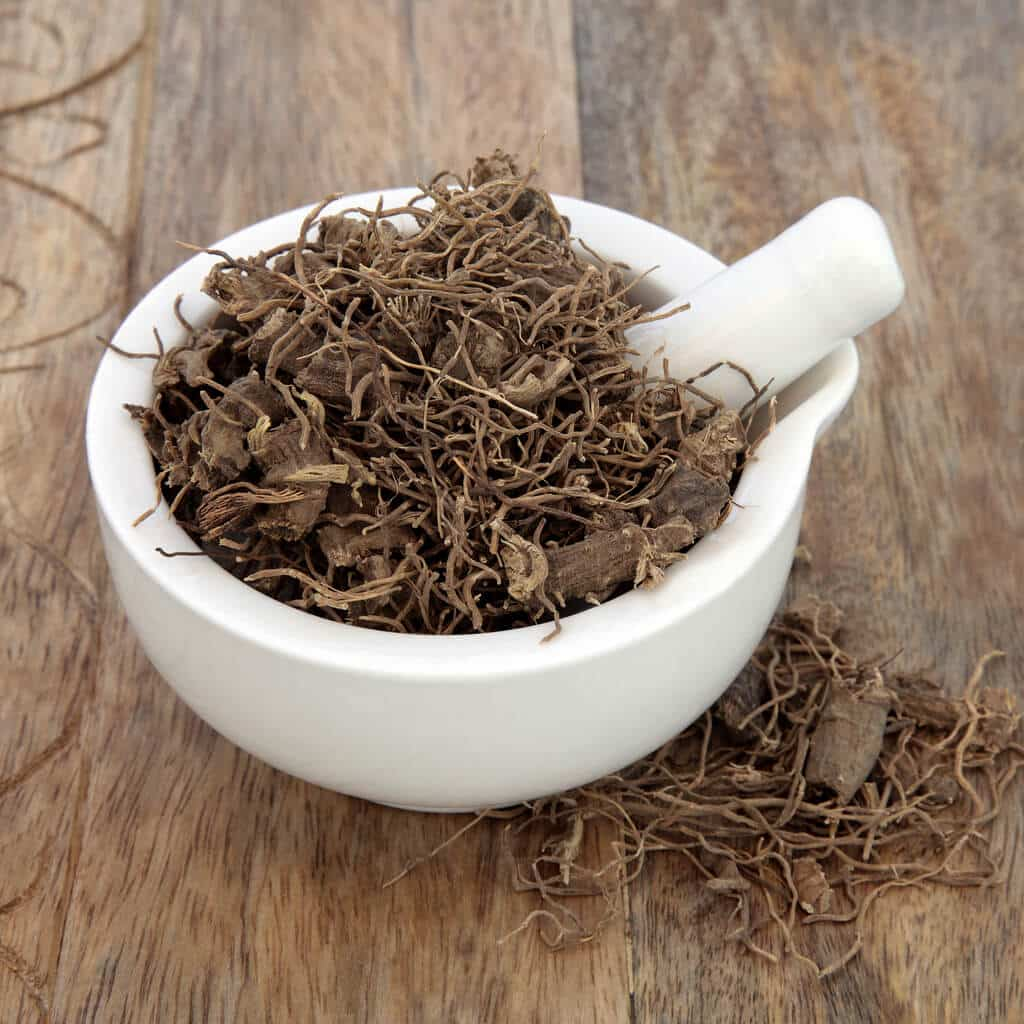 Black cohosh root herb